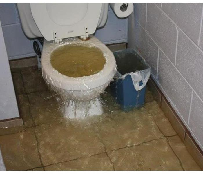 Toilet overflow? No problem!