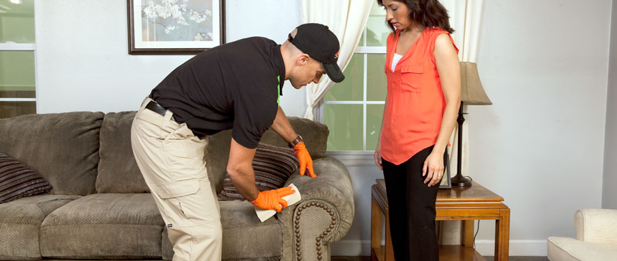 Altadena, CA carpet upholstery cleaning